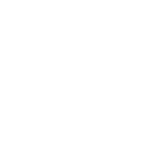 Youth Collective Newfoundland & Labrador